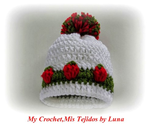 Strawberry Stitch Beanie Hat by Luna-9-16-2013 010