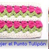 punto tulipan crochet
